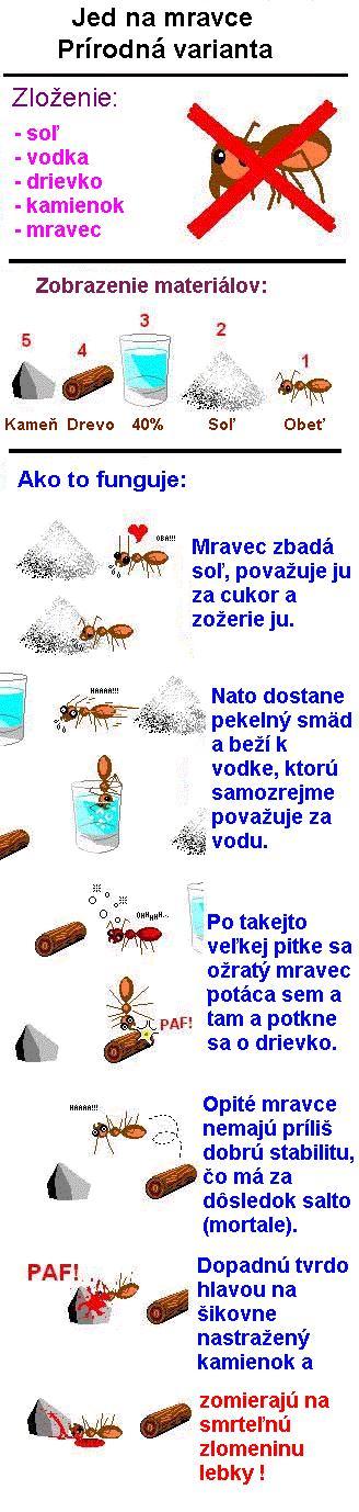 Zajímavý způsob likvidace mravenců